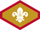Chief Scout Gold
