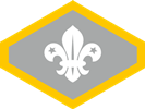 Chief Scout Silver